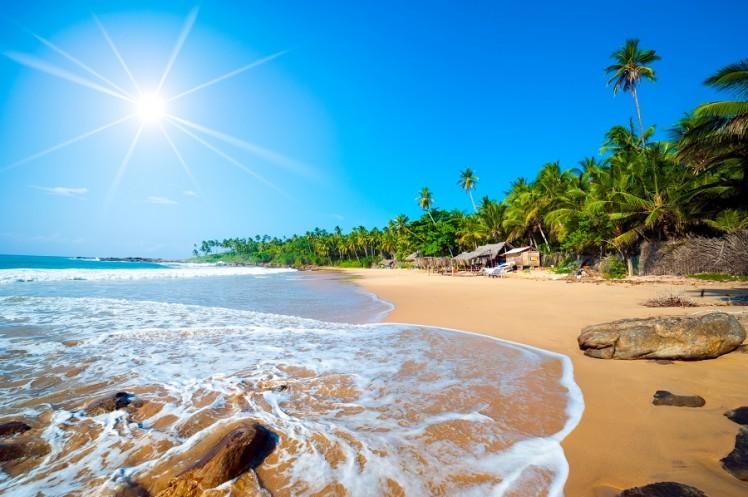райский остров скачать игру - фото 5